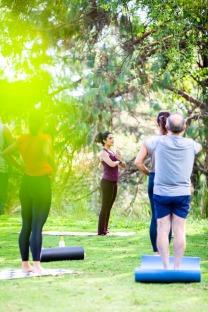 Coaching de Meditação em equipe