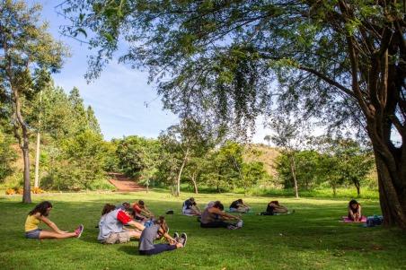 Yoga e práticas meditativas